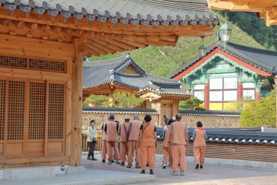חייהם של הנזירים | טיול מאורגן לקוריאה
