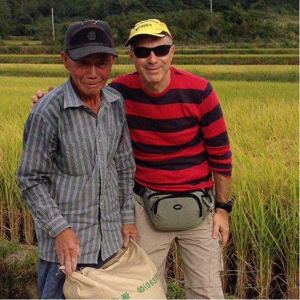 קציר האורז, טיול מאורגן לקוריאה