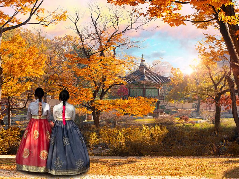 קוריאה בשלכת