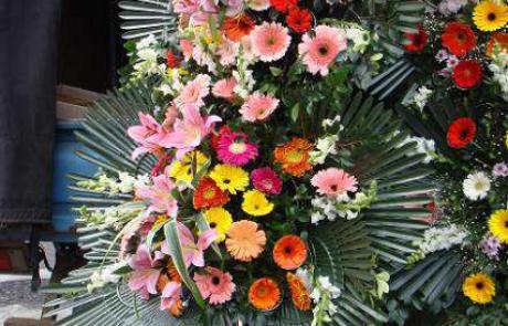 פרק 11 | פרחים רבותי, פרחים.