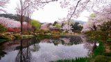 3820137200900118k_Bomunjeong Pavilion