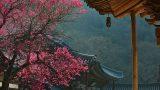 3820137200900147k_Hwaeomsa Temple