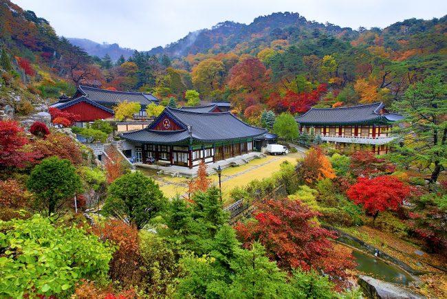 מסע עומק לקוריאה | פסטיבלי הסתיו וצבעי השלכת בהרים | 9-23/10/2018 הטיול מלא!