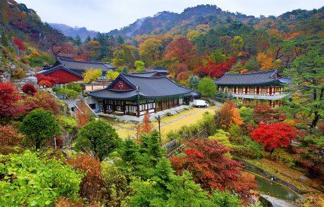 6-20/10/2020 (חומה״ס)   מסע עומק לקוריאה   פסטיבלי הסתיו וצבעי השלכת בהרים