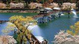 3820142201400028k_Spring in Woryeonggyo Bridge