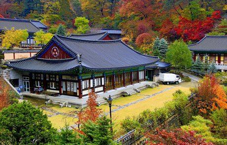טיול מאורגן לקוריאה – ההרשמה המוקדמת לטיולי הסתיו 2021 החלה!