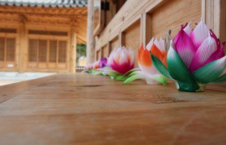 Temple Stay – למצוא את השקט והשלווה שבתוכנו | עופר דנון