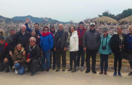 קבוצת מטיילי אקספלור קוריאה | מסע עומק לקוריאה אפריל 2019