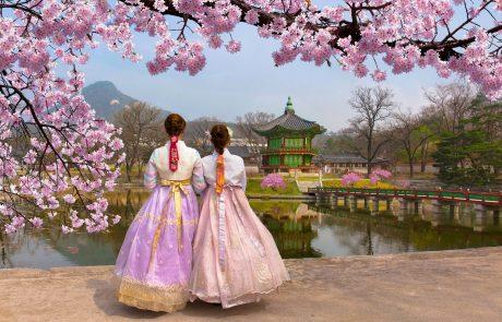 2-16/4/2019 | מסע עומק לקוריאה | פריחת הדובדבן וחגיגות האביב  • היציאה מובטחת!